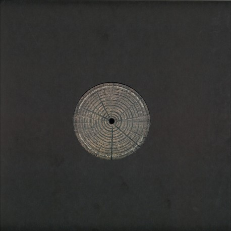 "Lake People - Phase Transition (2x12"")"