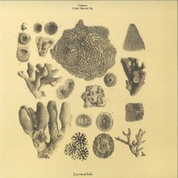 Tulbure - Codul Morsei EP